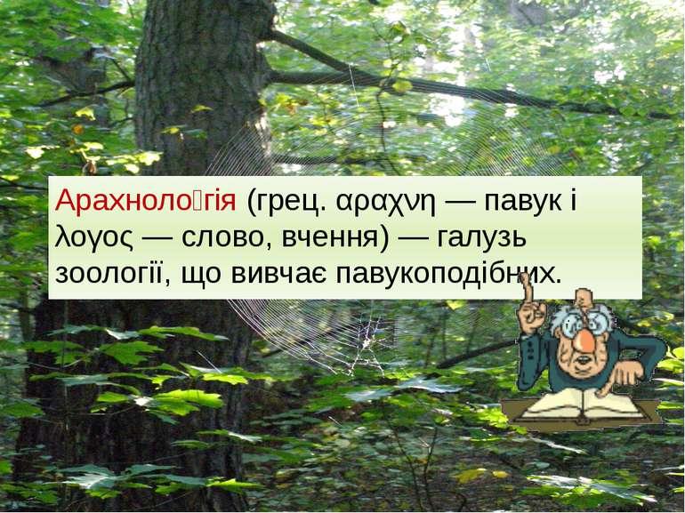 Арахноло гія (грец. αραχνη — павук і λογος — слово, вчення) — галузь зоології...