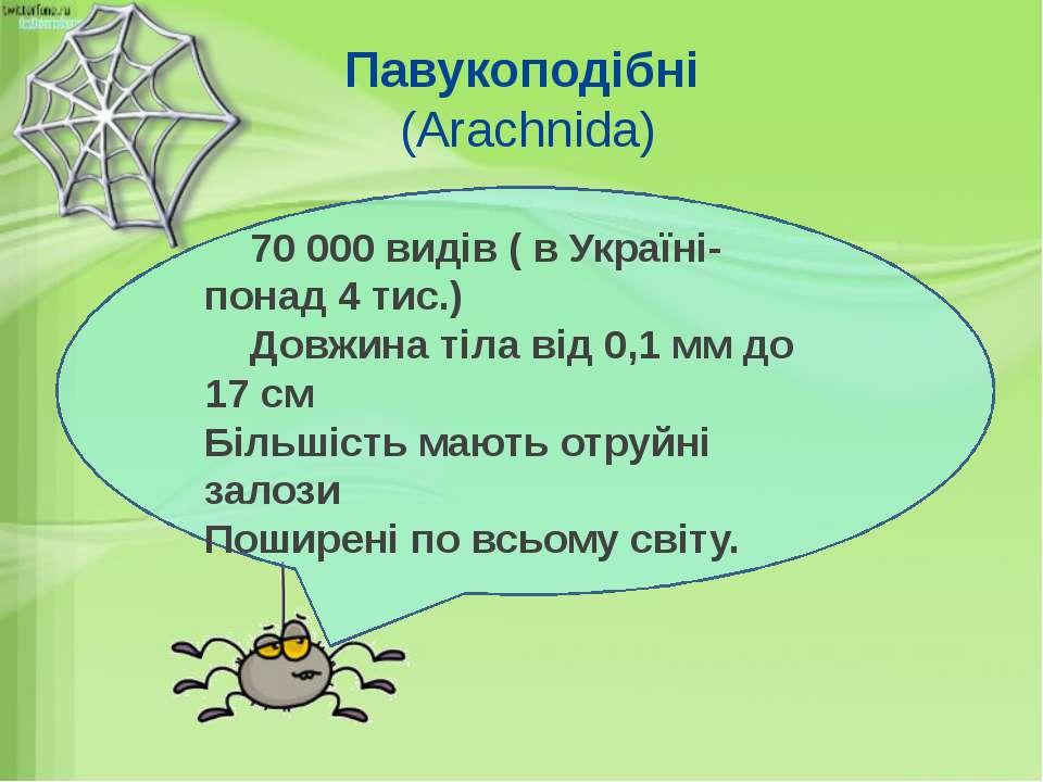Павукоподібні (Arachnida) 70 000 видів ( в Україні- понад 4 тис.) Довжина тіл...