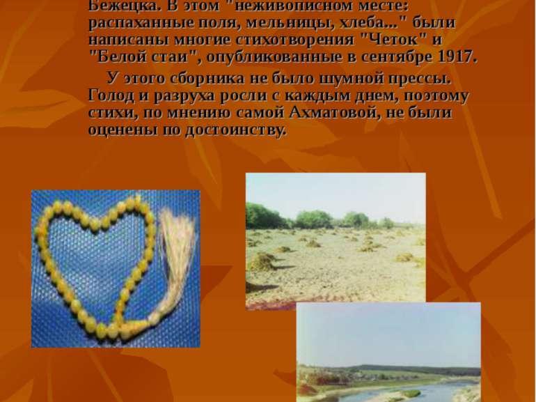 Каждое лето Ахматова проводила в Тверской губернии, в пятнадцати верстах от Б...