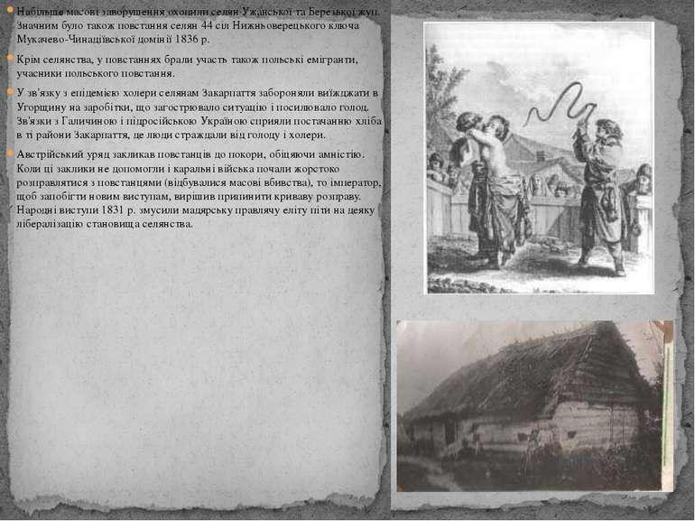 Набільше масові заворушення охопили селян Ужанської та Березької жуп. Значним...