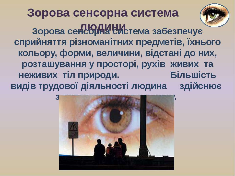 Зорова сенсорна система забезпечує сприйняття різноманітних предметів, їхньог...
