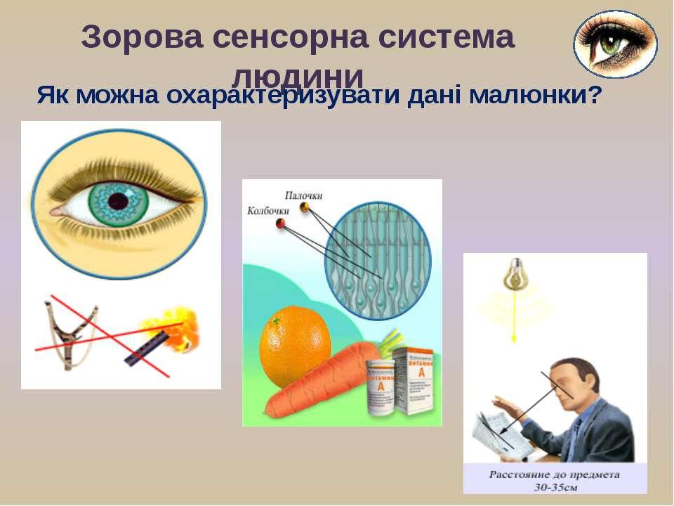 Зорова сенсорна система людини Як можна охарактеризувати дані малюнки?