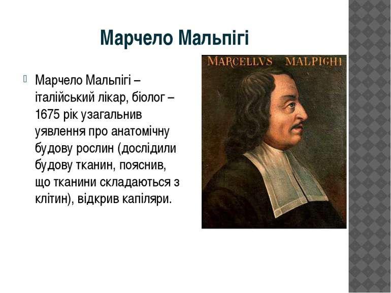 Марчело Мальпігі Марчело Мальпігі –італійський лікар, біолог – 1675 рік узага...