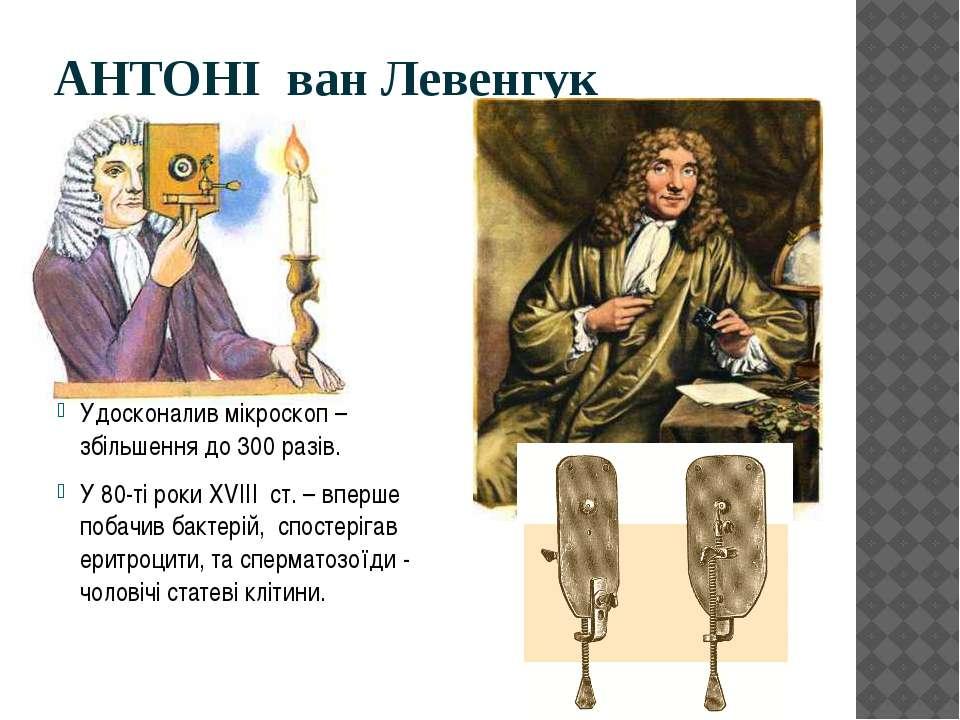 АНТОНІ ван Левенгук Удосконалив мікроскоп – збільшення до 300 разів. У 80-ті ...