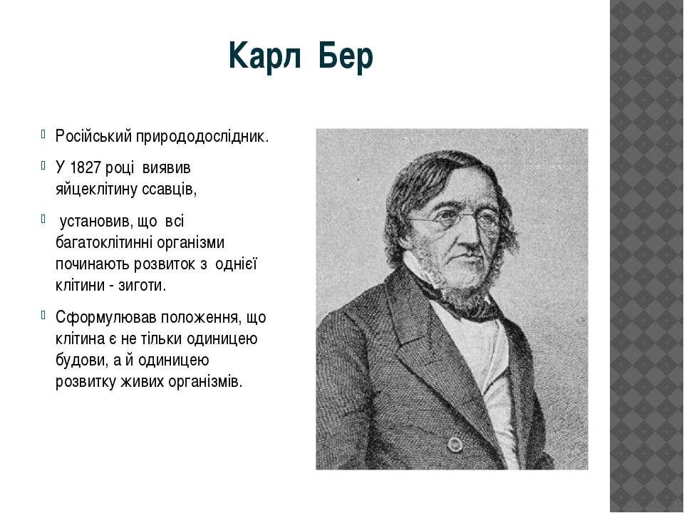 Карл Бер Російський природодослідник. У 1827 році виявив яйцеклітину ссавців,...