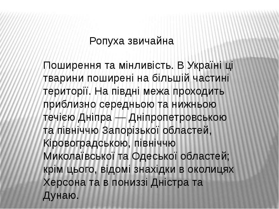 Ропуха звичайна Поширення та мінливість. В Україні ці тварини поширені на біл...