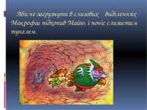 Аби не загрузнути в слизових виділеннях Макрофаг підхопив Майю, і поніс слизи...
