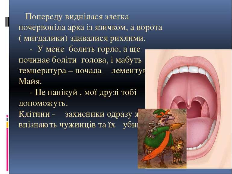 Попереду виднілася злегка почервоніла арка із язичком, а ворота ( мигдалики) ...