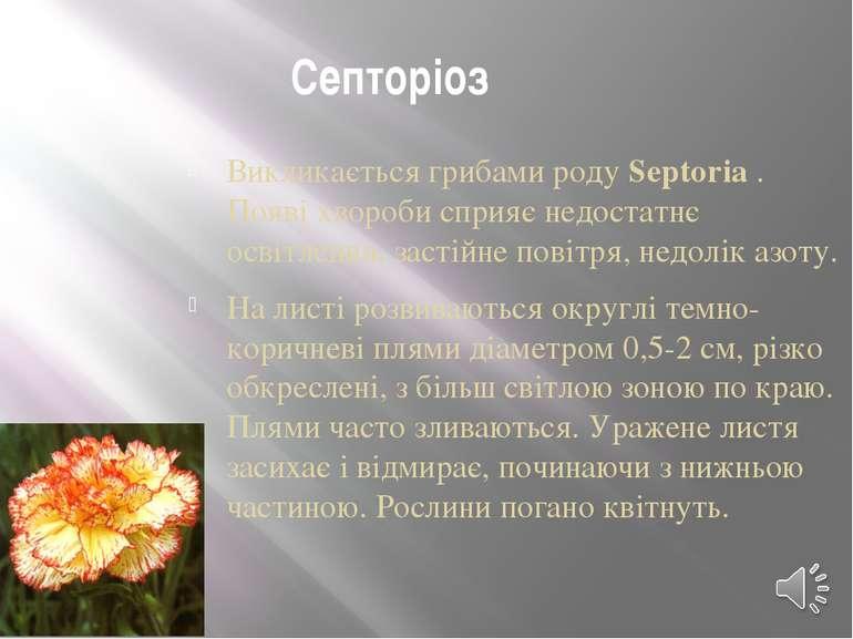 Септоріоз Викликається грибами родуSeptoria. Появі хвороби сприяє недостатн...