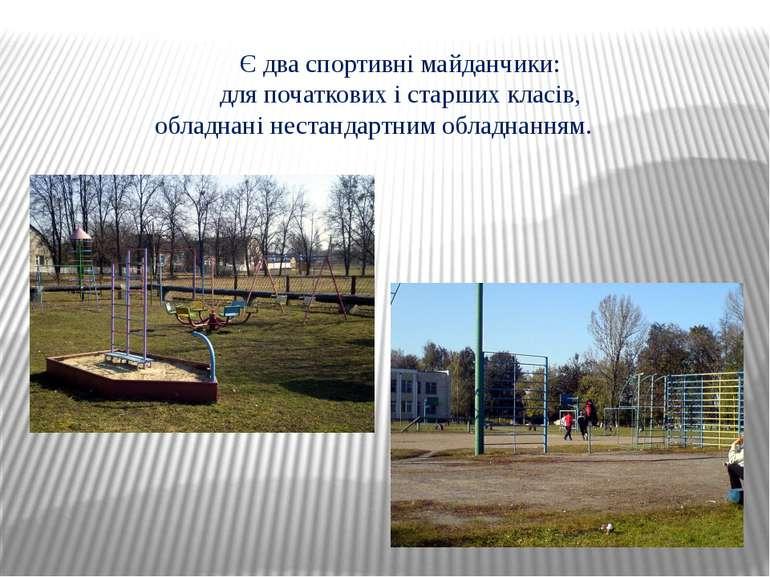 Є два спортивні майданчики: для початкових і старших класів, обладнані нестан...