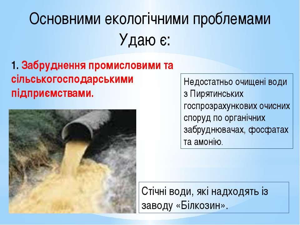 Основними екологічними проблемами Удаю є: 1. Забруднення промисловими та сіль...