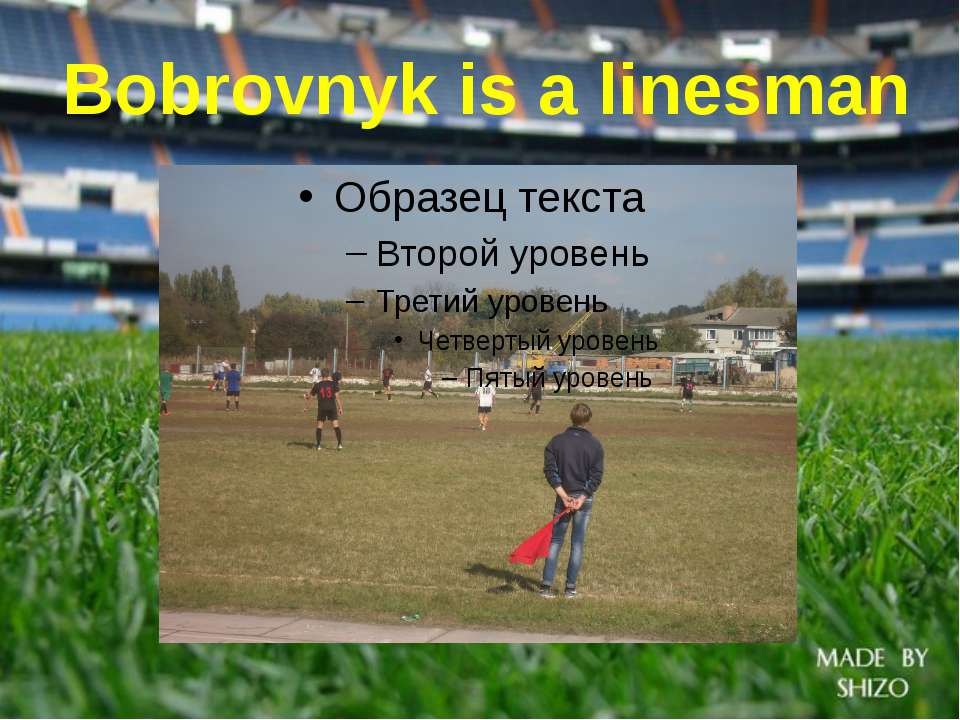 Bobrovnyk is a linesman
