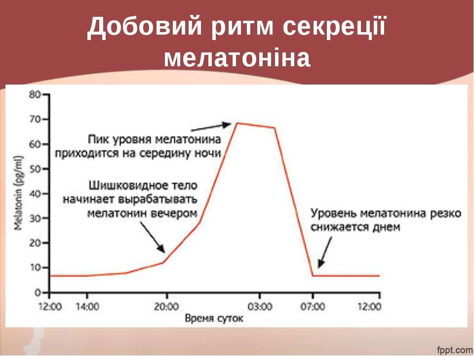 Добовий ритм секреції мелатоніна