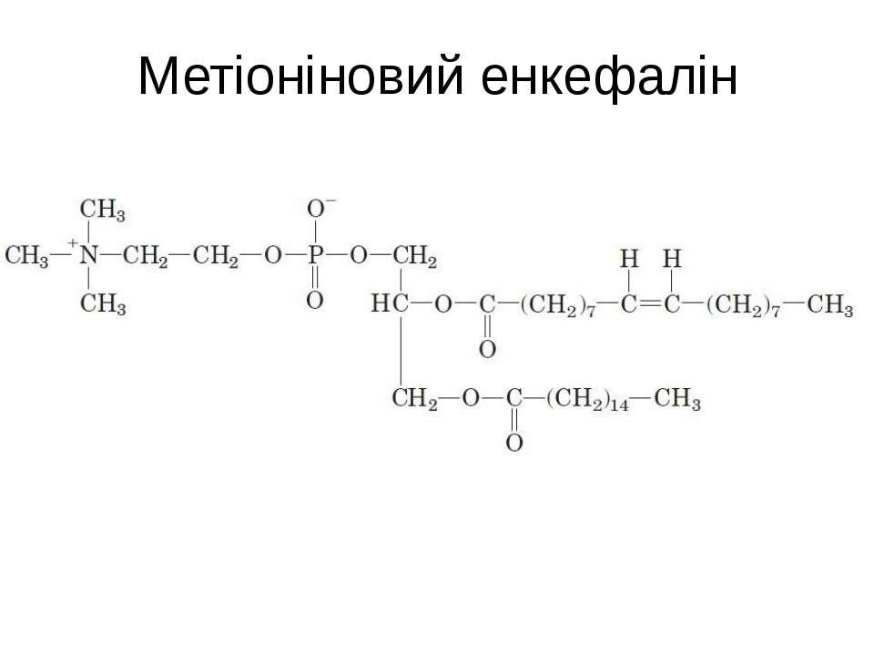Метіоніновий енкефалін