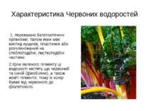 Характеристика Червоних водоростей 1. переважно багатоклітинні організми, тал...