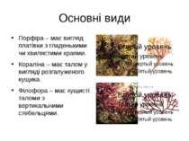 Основні види Порфіра – має вигляд платівки з гладенькими чи хвилястими краями...