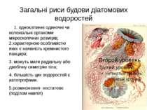 Загальні риси будови діатомових водоростей 1. одноклітинні одиночні чи колоні...