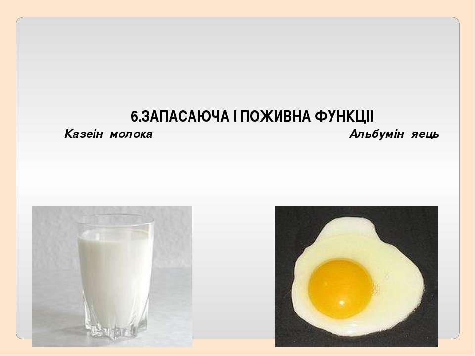 6.ЗАПАСАЮЧА I ПОЖИВНА ФУНКЦII Казеiн молока Альбумiн яeць