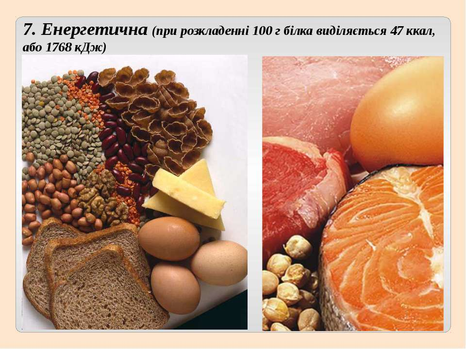 7. Енергетична (при розкладенні 100 г білка виділяється 47 ккал, або 1768 кДж)