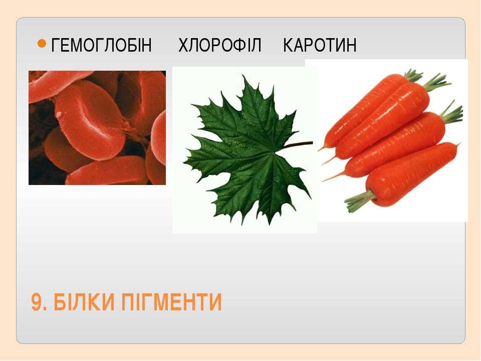 9. БIЛКИ ПIГМЕНТИ ГЕМОГЛОБIН ХЛОРОФIЛ КАРОТИН