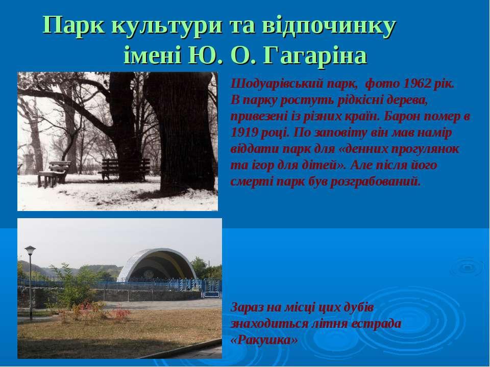 Парк культури та відпочинку імені Ю. О. Гагаріна Шодуарівський парк, фото 196...