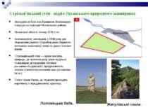 Стрільц івський степ - відділ Луганського природного заповіднику. Знаходиться...