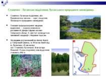 Станично - Луганське відділення Луганського природного заповіднику. Станично-...