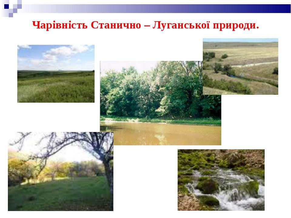Чарівність Станично – Луганської природи.