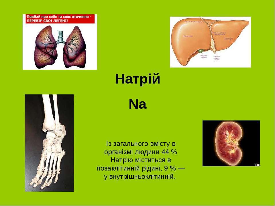 Натрій Na Із загального вмісту в організмі людини 44 % Натрію міститься в поз...