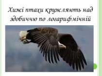 Хижi птахи кружляють над здобиччю по логарифмiчнiй спiралi.