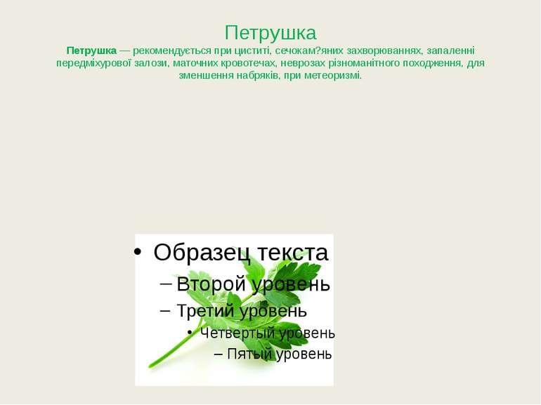 Петрушка Петрушка— рекомендується при циститі, сечокам?яних захворюваннях, з...