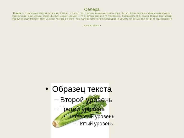 Селера Селера— вїжу використовують якназемну (стебла талистя), так іпідз...