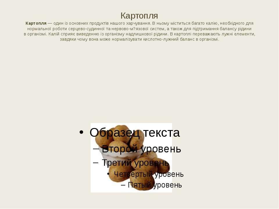 Картопля Картопля— один ізосновних продуктів нашого харчування. Вньому міс...
