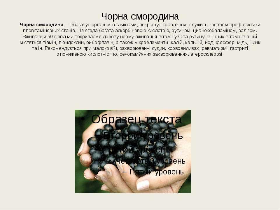 Чорна смородина Чорна смородина— збагачує організм вітамінами, покращує трав...