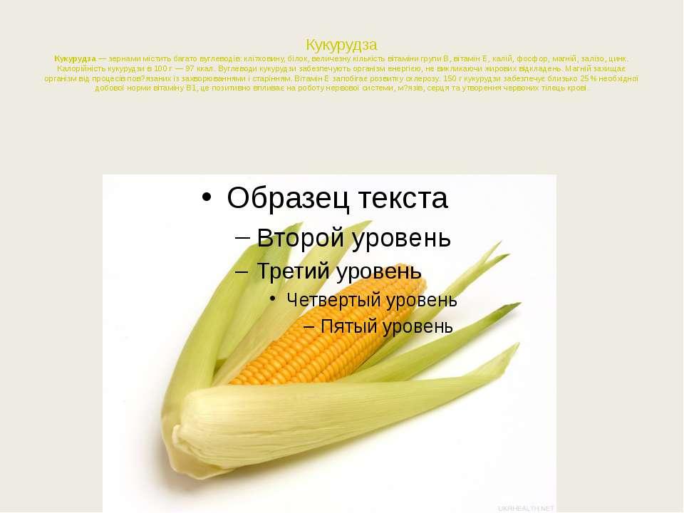 Кукурудза Кукурудза— зернами містить багато вуглеводів: клітковину, білок, в...