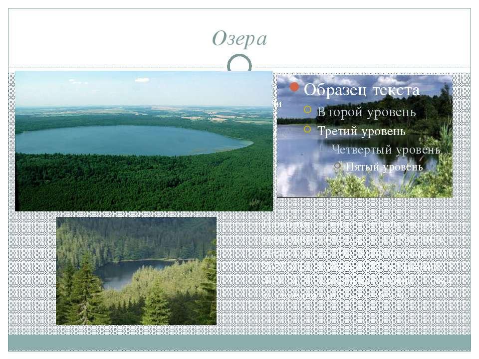 Озера Усього в сучасних межах парку є 23 озера загальною площею 6338,9 га. Во...