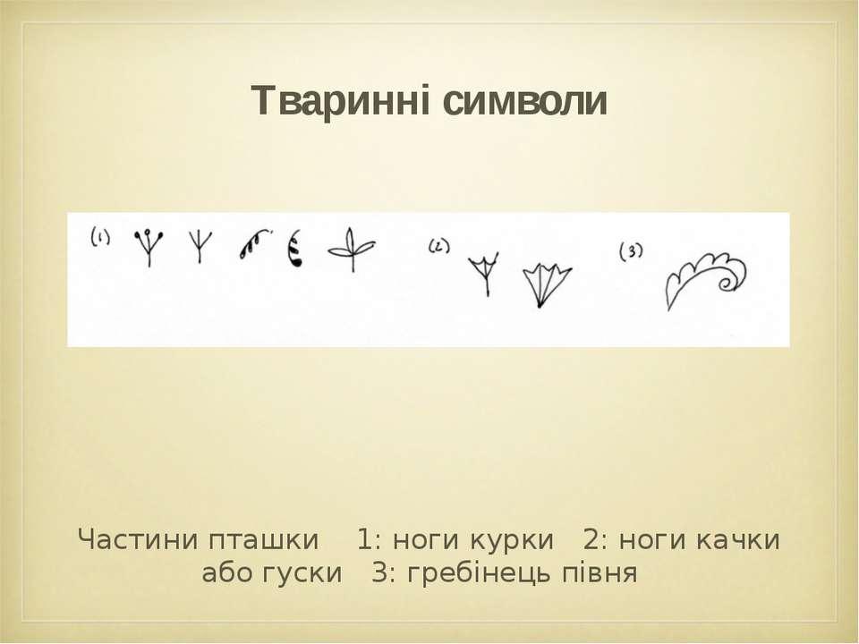 Тваринні символи Частини пташки 1: ноги курки 2: ноги качки або гуски 3: греб...