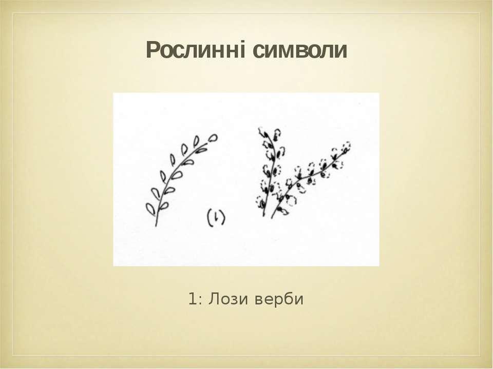Рослинні символи 1: Лози верби