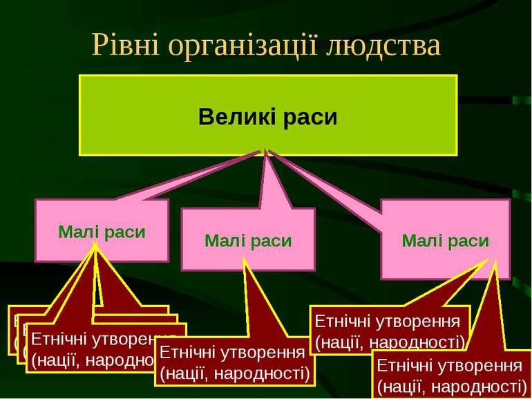 Рівні організації людства Великі раси Малі раси Етнічні утворення (нації, нар...