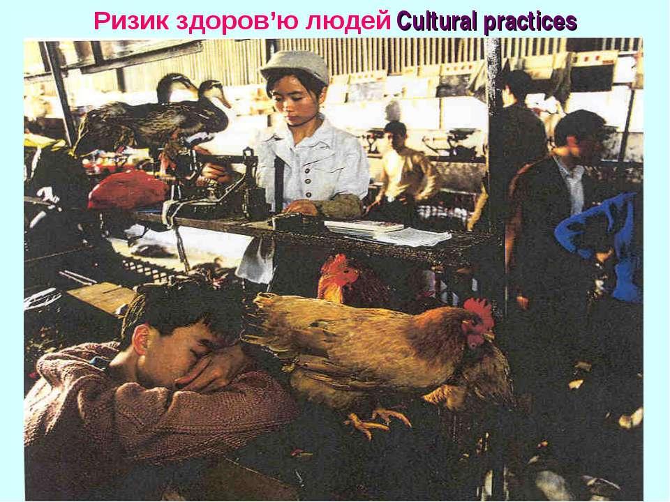 Ризик здоров'ю людей Cultural practices