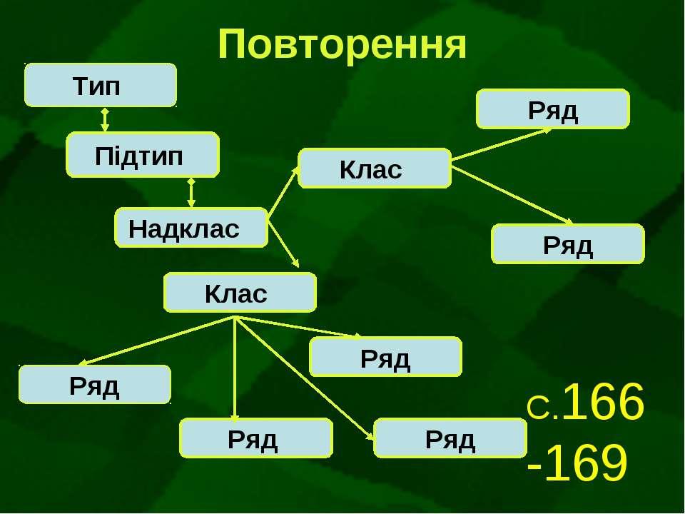 Повторення Тип Підтип Надклас Клас Клас Ряд Ряд Ряд Ряд Ряд Ряд С.166 -169