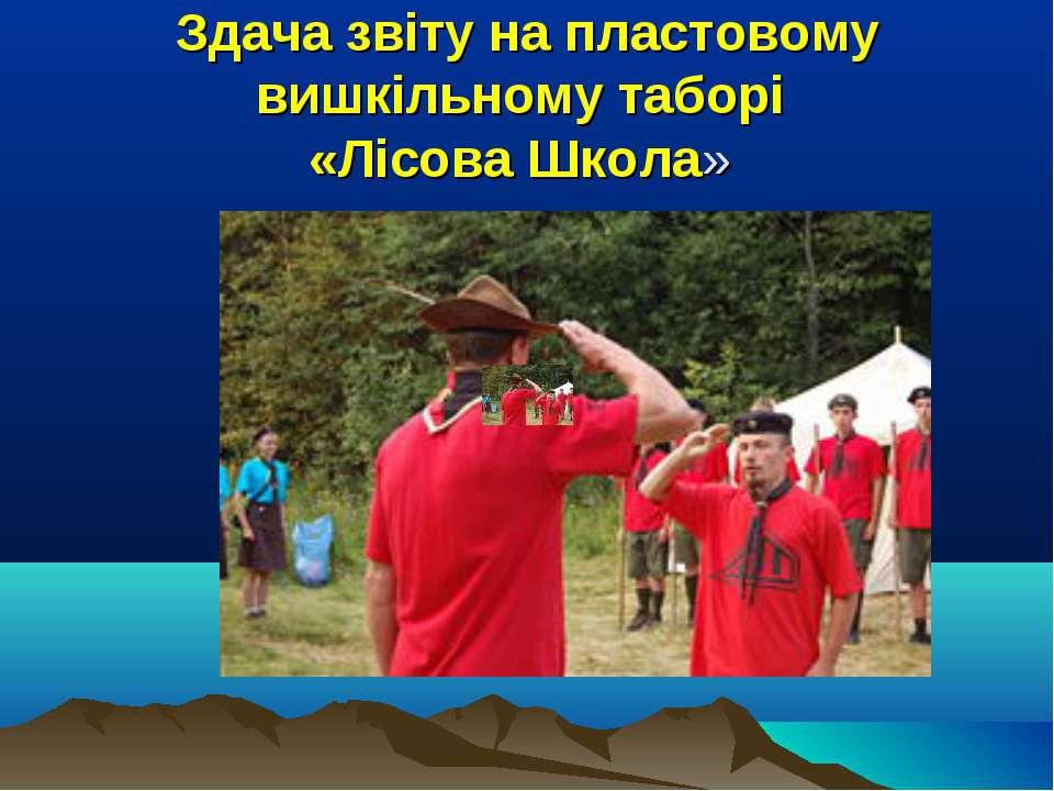 Здача звіту на пластовому вишкільному таборі «Лісова Школа»