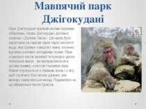 Мавпячий парк Джігокудані Парк Джігокудані відомий своїми гарячими областями....