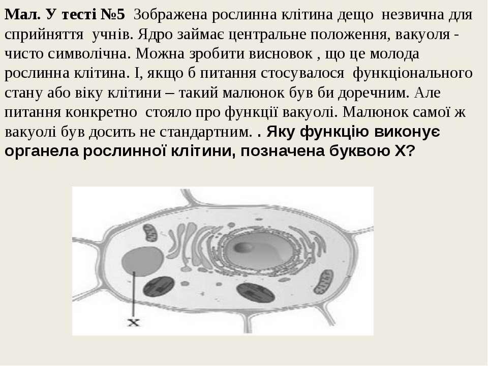 Мал. У тесті №5 Зображена рослинна клітина дещо незвична для сприйняття учнів...