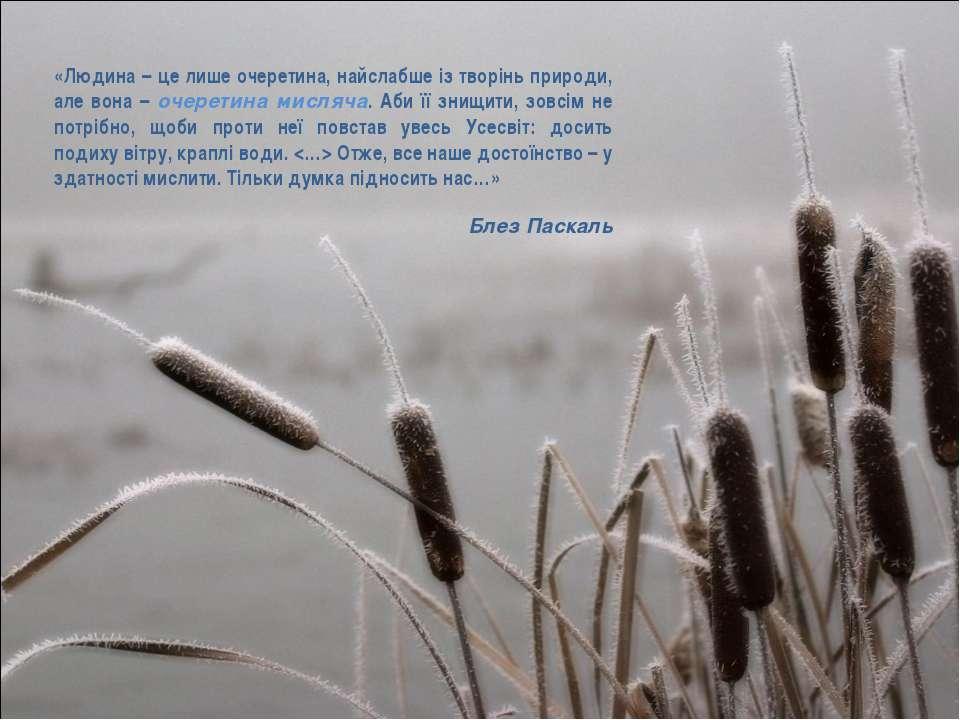 «Людина – це лише очеретина, найслабше із творінь природи, але вона – очерети...
