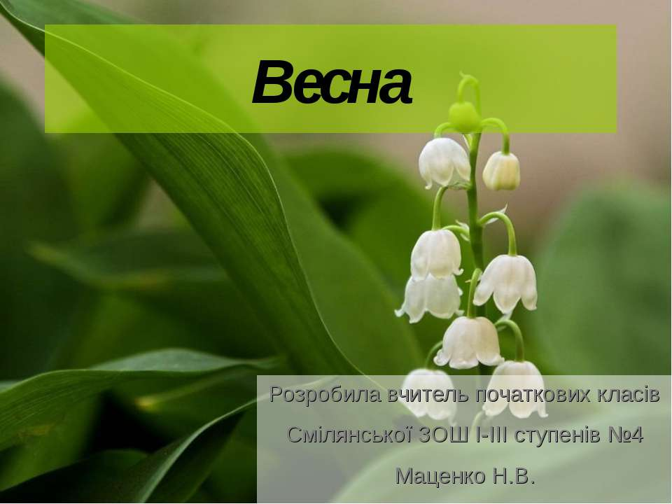 Весна Розробила вчитель початкових класів Смілянської ЗОШ І-ІІІ ступенів №4 М...