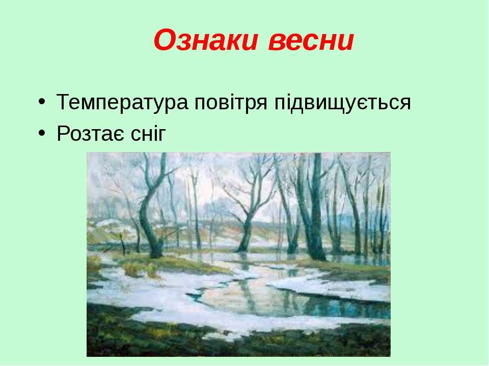 Ознаки весни Температура повітря підвищується Розтає сніг