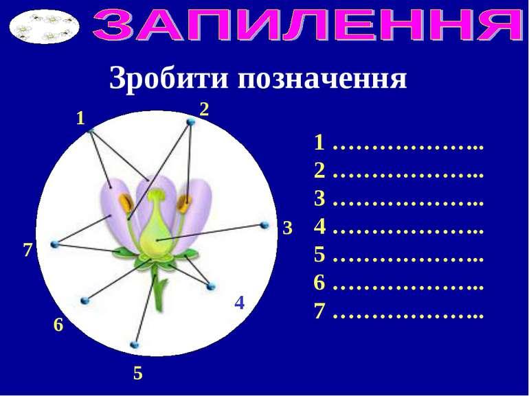 Зробити позначення 1 2 3 7 6 5 4 1 ……………….. 2 ……………….. 3 ……………….. 4 ……………….. ...