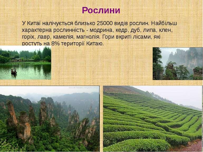 Рослини У Китаї налічується близько 25000 видів рослин. Найбільш характерна р...