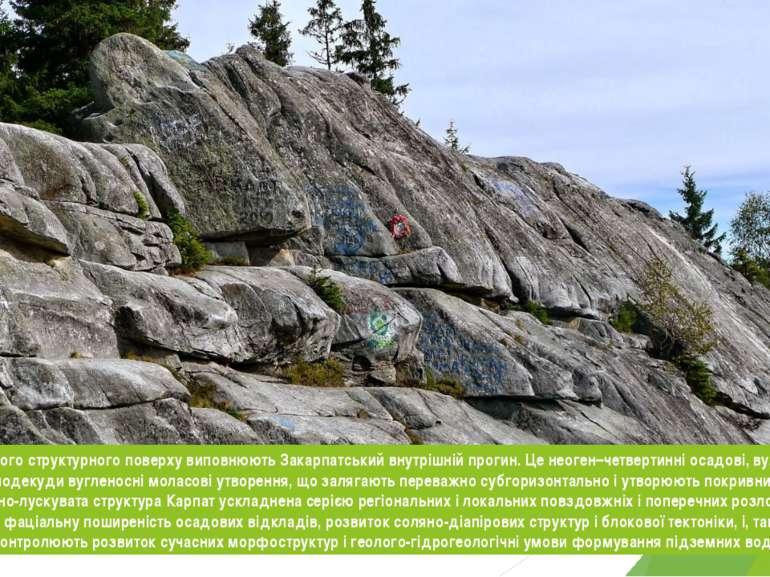 Відклади верхнього структурного поверху виповнюють Закарпатський внутрішній п...